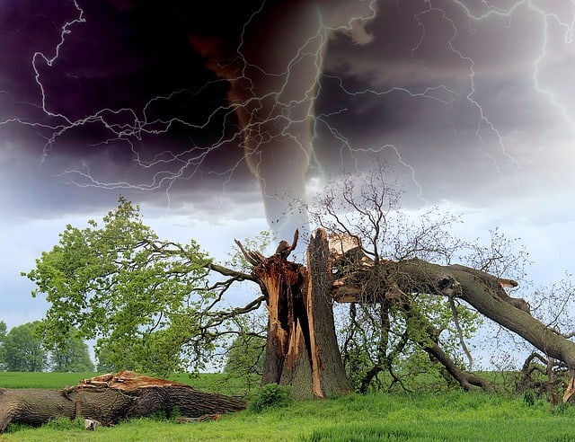 effects of tornadoes on the environment 3